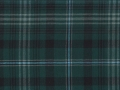 Forest Thistle tartan Geoffrey (Tailor) Scotland, Edinburgh, Glasgow, London